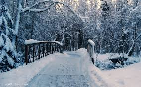 winter background images hd. Brilliant Winter Winter PC Backgrounds HDQ Cover Throughout Background Images Hd U