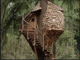 treehouse. Treehouse
