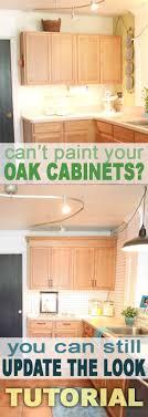 Oak Cabinet Redo Kitchen Redo In 2019 Oak Kitchen Cabinets Redo