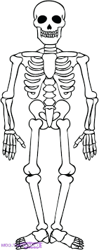 Small Picture Skeleton Coloring Pages zimeonme