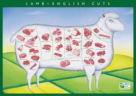 Cuts Of Lamb Chart Cuts Of Lamb Guide From Morley Butchers Morley Butchers