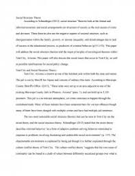social structure theory research paper zoom