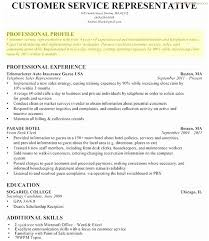 40 Great Pics Of Profile Summary For Customer Service Resume RESUME New Resume Profile Summary