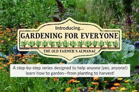preparing garden soil for planting