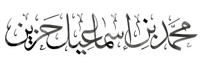muhammad hozien website