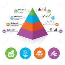 Pyramid Chart Template Natural Bio Food Icons Halal And Kosher