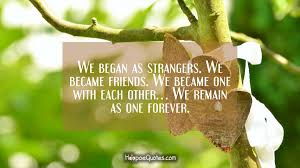 The Stranger Quotes Fascinating We Began As Strangers We Became Friends We Became One With Each