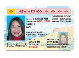 – License New Online Driver Immigrants Mexico Buy