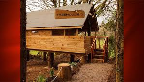 150 Best TREEHOUSE Images On Pinterest  Amazing Tree House The Treehouse Accommodation Ireland