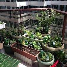 Balcony Garden Choosing Containers For Your Balcony Garden Wormcompostingto