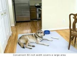 pet proof area rugs pet proof area rugs protective non skid carpet runner for floors stairs pet proof area rugs
