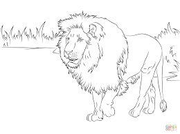 Small Picture Lions coloring pages Free Coloring Pages