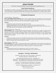 San Diego Resume Writers Resume Resume Templates O1nonk5bme