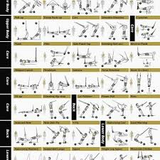 Trx Exercise Chart Pdf Best Picture Of Chart Anyimage Org