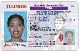Driver's Visitor Temporary License non-visa Individuals For Status tvdl Undocumented