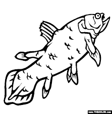Small Picture Sea Life Online Coloring Pages Page 2