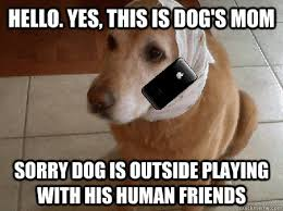 hello this is dog. [ img] hello this is dog