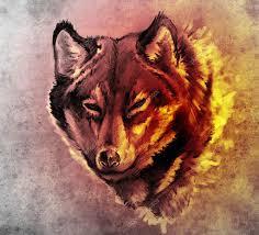 тату волка скачать эскиз тату искусства иллюстрации головы волка