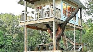 basic tree house pictures. Simple Treehouse Ideas Gorgeous Basic Tree House Plans For Kids . Pictures