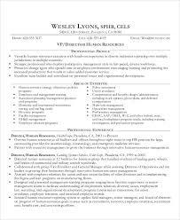 10 Director Curriculum Vitae Free Sample Example Format