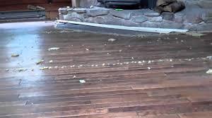removing carpet over hardwood floors