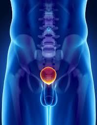 9 рецептов народной медицины для лечения простатита