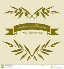 фото оливковые ветки