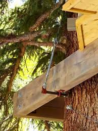 Tree House Plans Two Trees 1484 Best Tree Houses Images On Pinterest
