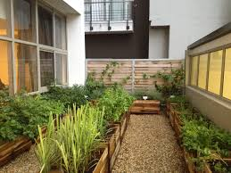 the launch of the herb and vegetable garden