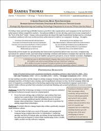 Example High Tech Industry Executive Resume
