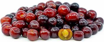 Capulin Cherries Information And Facts