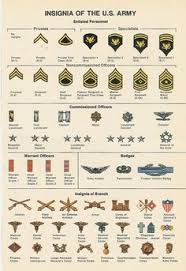 Army Insignia Chart 29 Best Army Images In 2019 Military Army Us Army