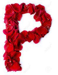 Red Petals Rose Stock Photo ...