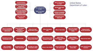 Quality Management Organization Chart Draw Company Structure With Organization Charting Software