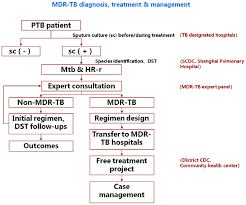 Pathophysiology Of Pulmonary Tuberculosis In Flow Chart Efficacy And Effect Of Free Treatment On Multidrug Resistant