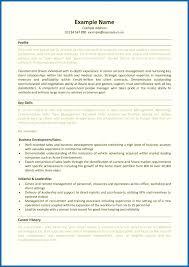 Resume Template Skills Based Sarahepps Com