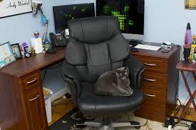 most comfortable desk chairs office desk design comfy desk