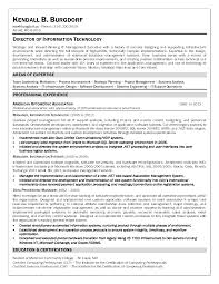 Director Of Information Technology Resume Example For Your