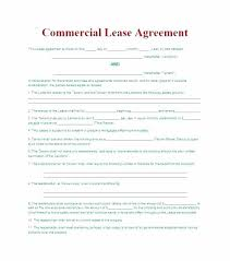 Apartment Rental Contract Sample Mesmerizing Rental Lease Agreement Template Pretty Apartment Agreements Computer