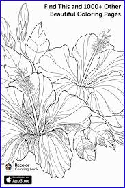 Coloring Pages For Recolor Inspirational Join Millions Of People Who