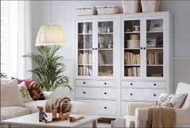 Grande Ikea Usa Living Room Storage Ikea Living Room Storage Storage Cabinets Living Room