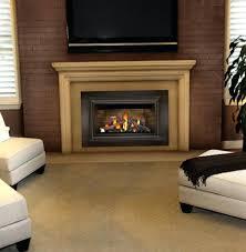 fireplace replacement doors. Replacement Fireplace Doors Heatilator Wood Burning