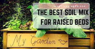 best soil for raised beds what you
