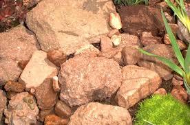 rocks used as mulch in a rock garden
