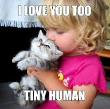 cute kittens and puppies quotes. Unique Kittens Too Cute Cute Changu0027e 3 Adorable Animals Funny Cats  Kittens Babies Puppies And Kittens For Quotes P