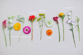 types of flowers in bouquets. diy flowers used types of in bouquets i