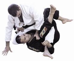 Resultado de imagem para jiu jitsu