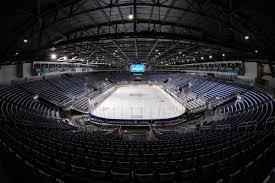 Torontos Organizational Depth Chart Leafs Marlies