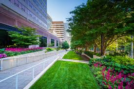 Office landscaping Modern Commercial Landscape Maintenance In Southern California Los Angeles Orange County Riverside San We Only Cut Grass Commercial Hoa Landscape Maintenance Orange County Seacrest
