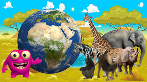 wild animals in african jungle. Wonderful African Kids Learn Jungle Animals  African Wildlife Comes Alive Mighty Morphinu0027  Learning  YouTube To Wild In A